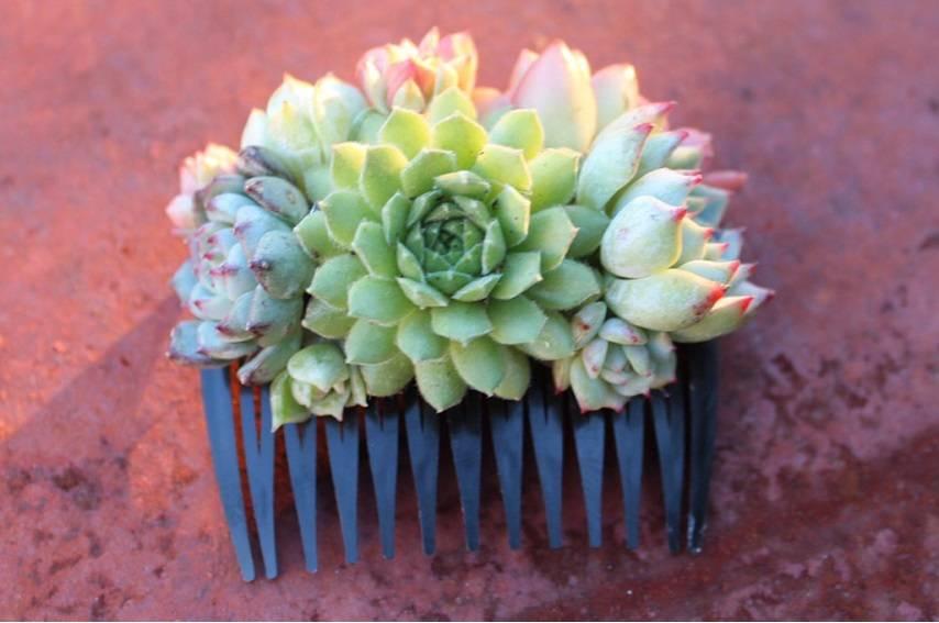 succulent comb bridal bride wedding