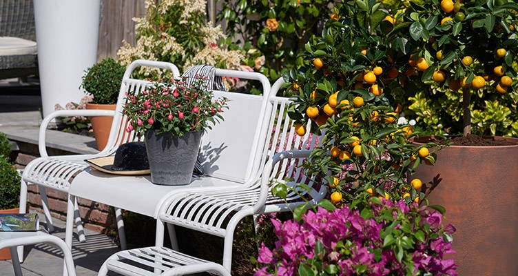 Outdoor life: Choose your garden trend