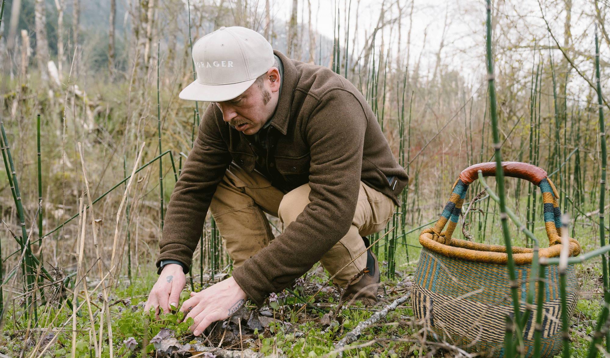 Man foraging for mushrooms