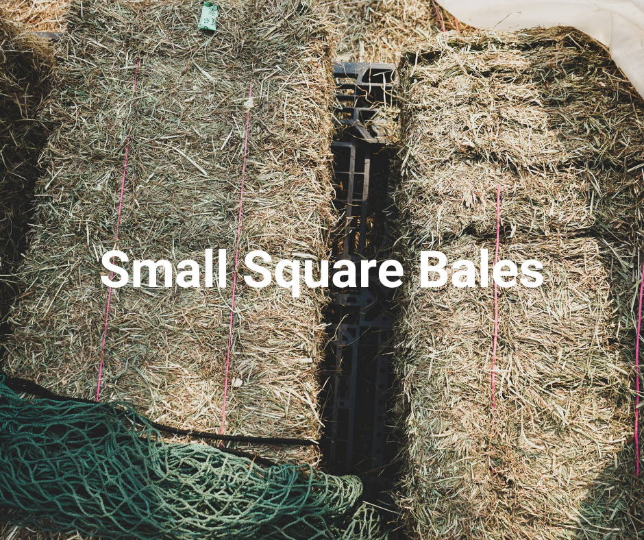 Small Square Bales