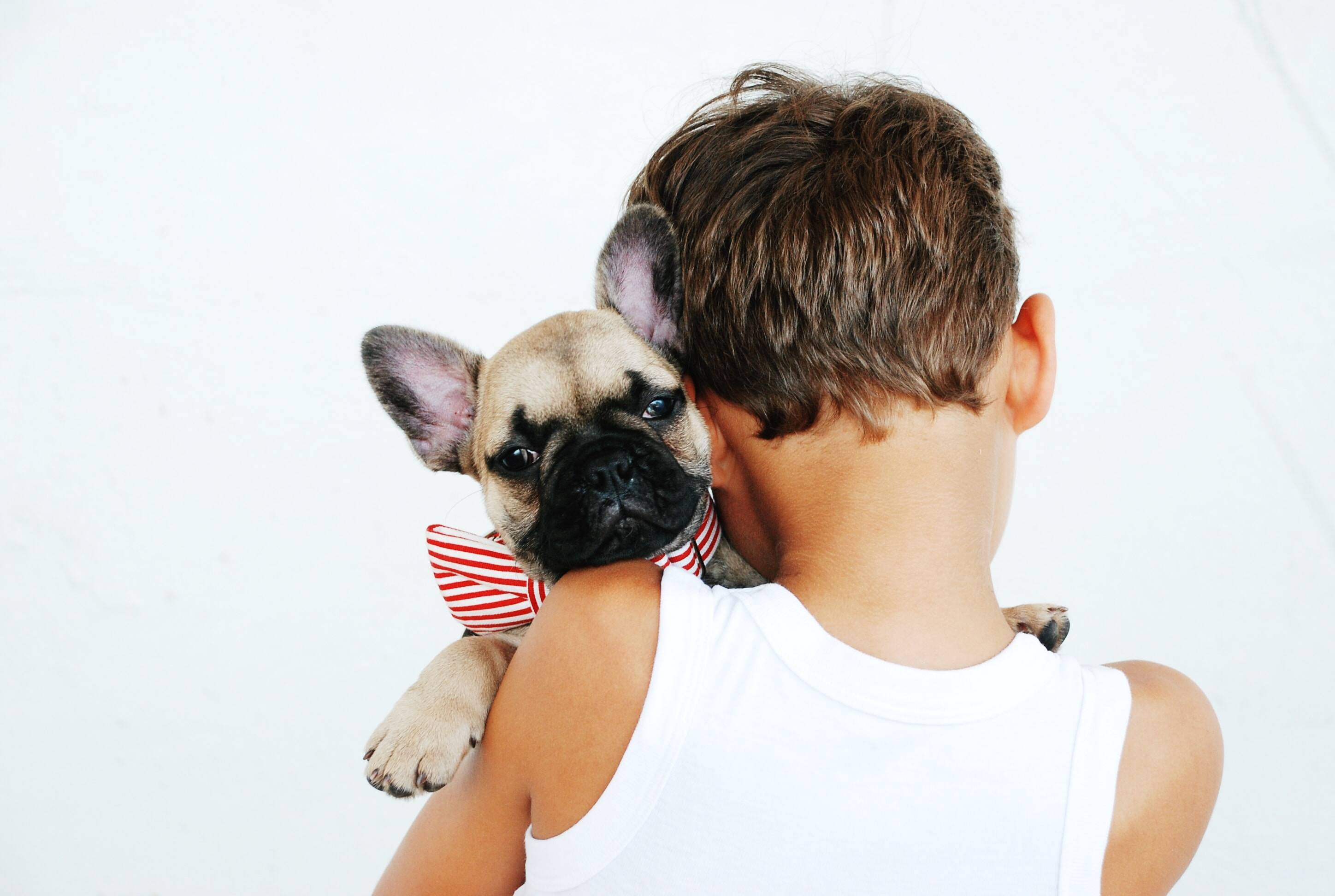 Ways to show your dog love