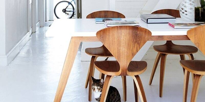 Explore our picks of dining chairs for your modern dining room.