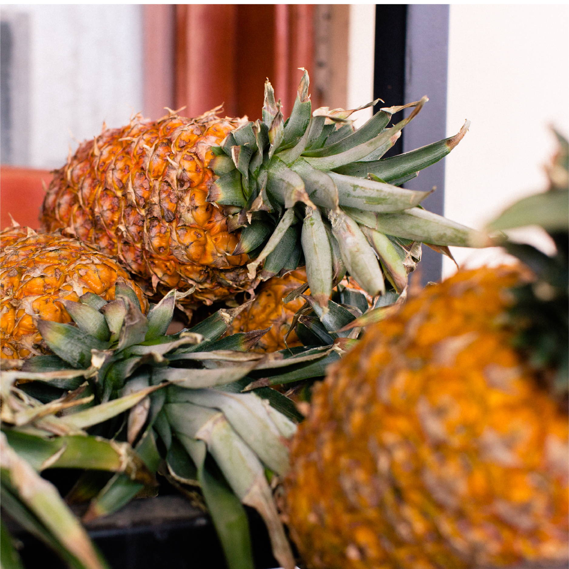 A pile of pineapples sit on a shelf outside of the kitchen at Good Shepherd Children's Home in Honduras.