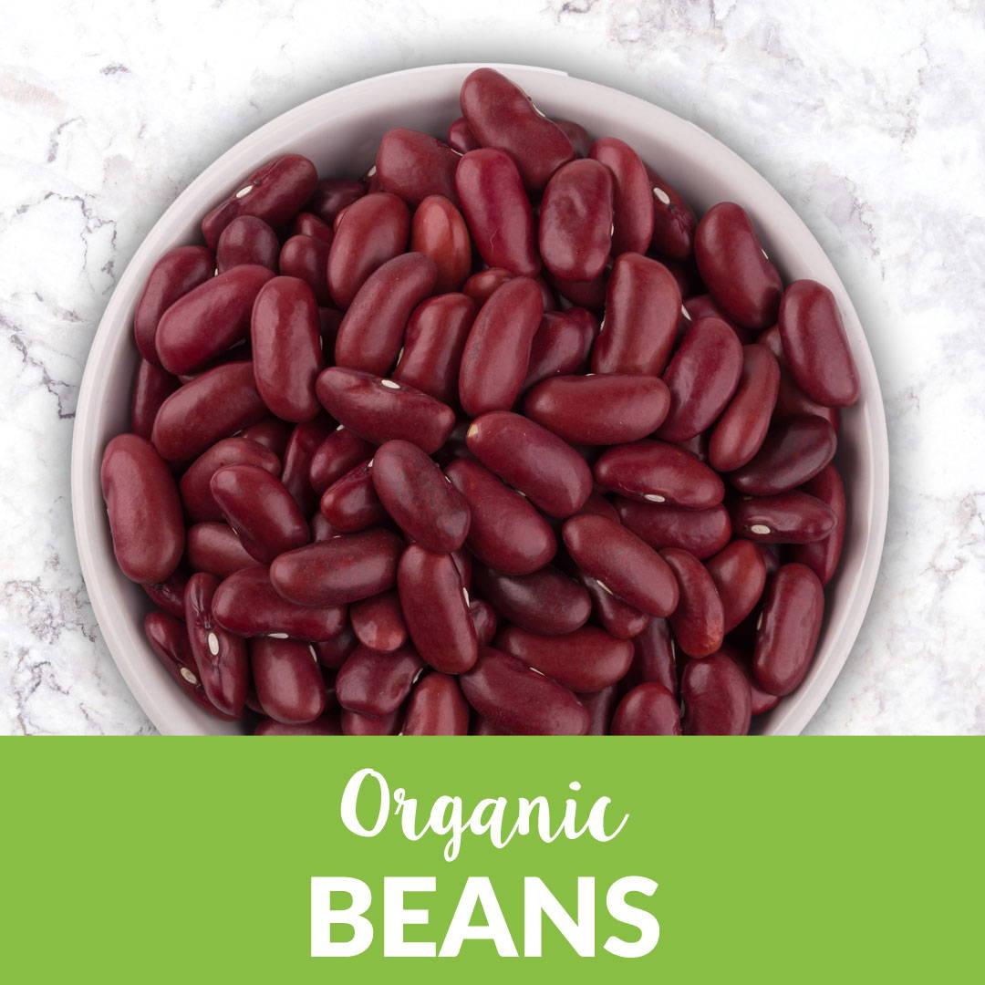 Organic Beans in bulk