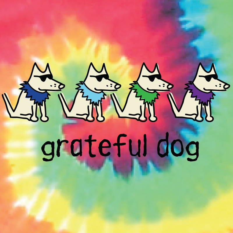 Shop teddy the dog grateful dog pup culture collection