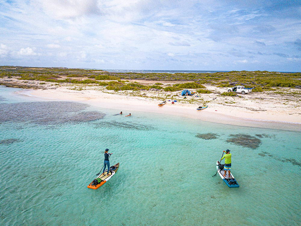 paddle boarding touring multi day trip to barbuda