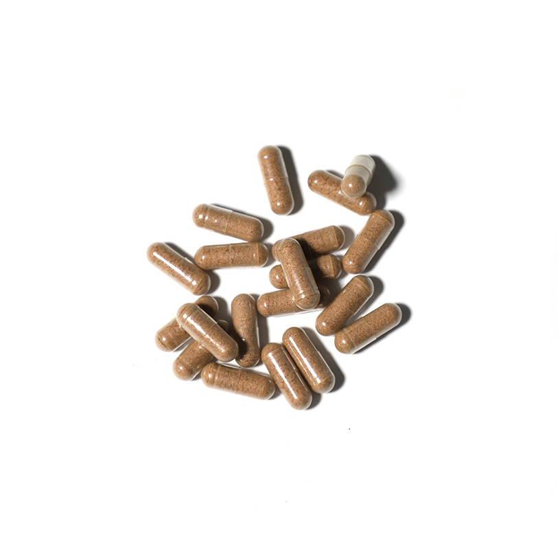 Nature Restore Cordyceps sinensis Supplement