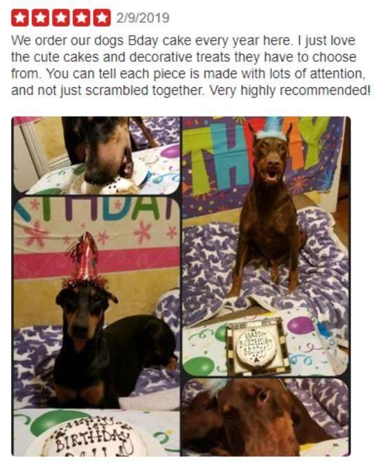 Dog Birthday Cake Order