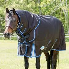 discount horse turnout blankets
