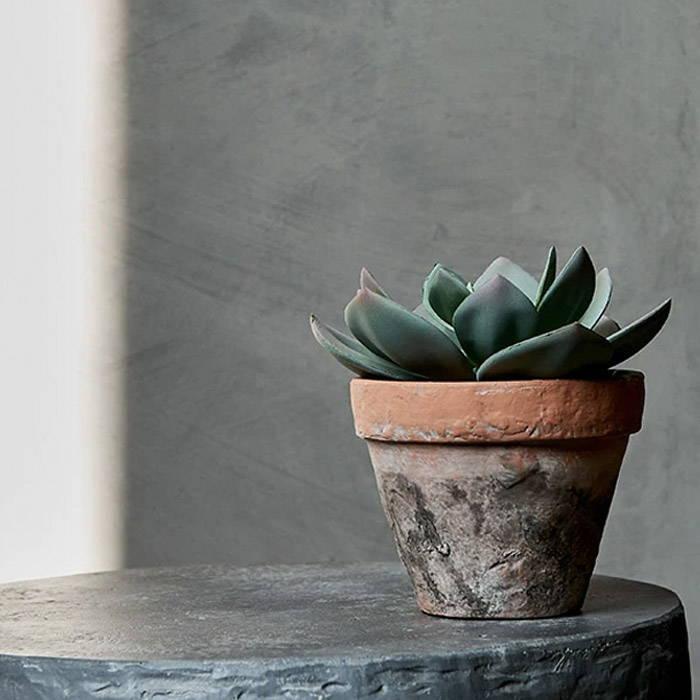 Cactus Faux plant