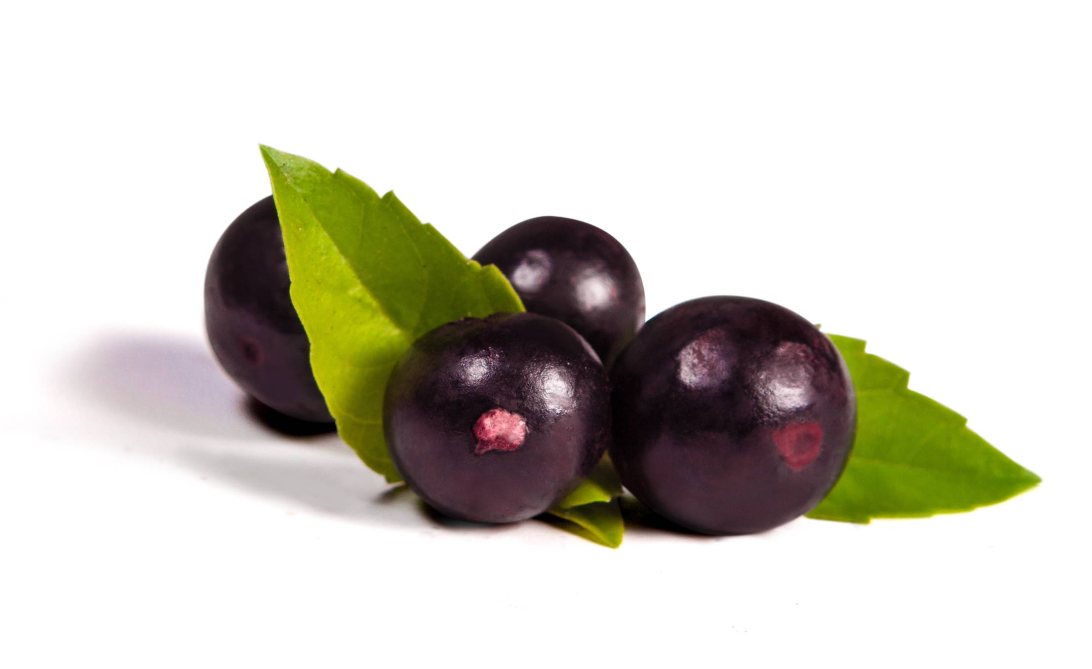 Acai Berries ingedient in Airelle Skincare