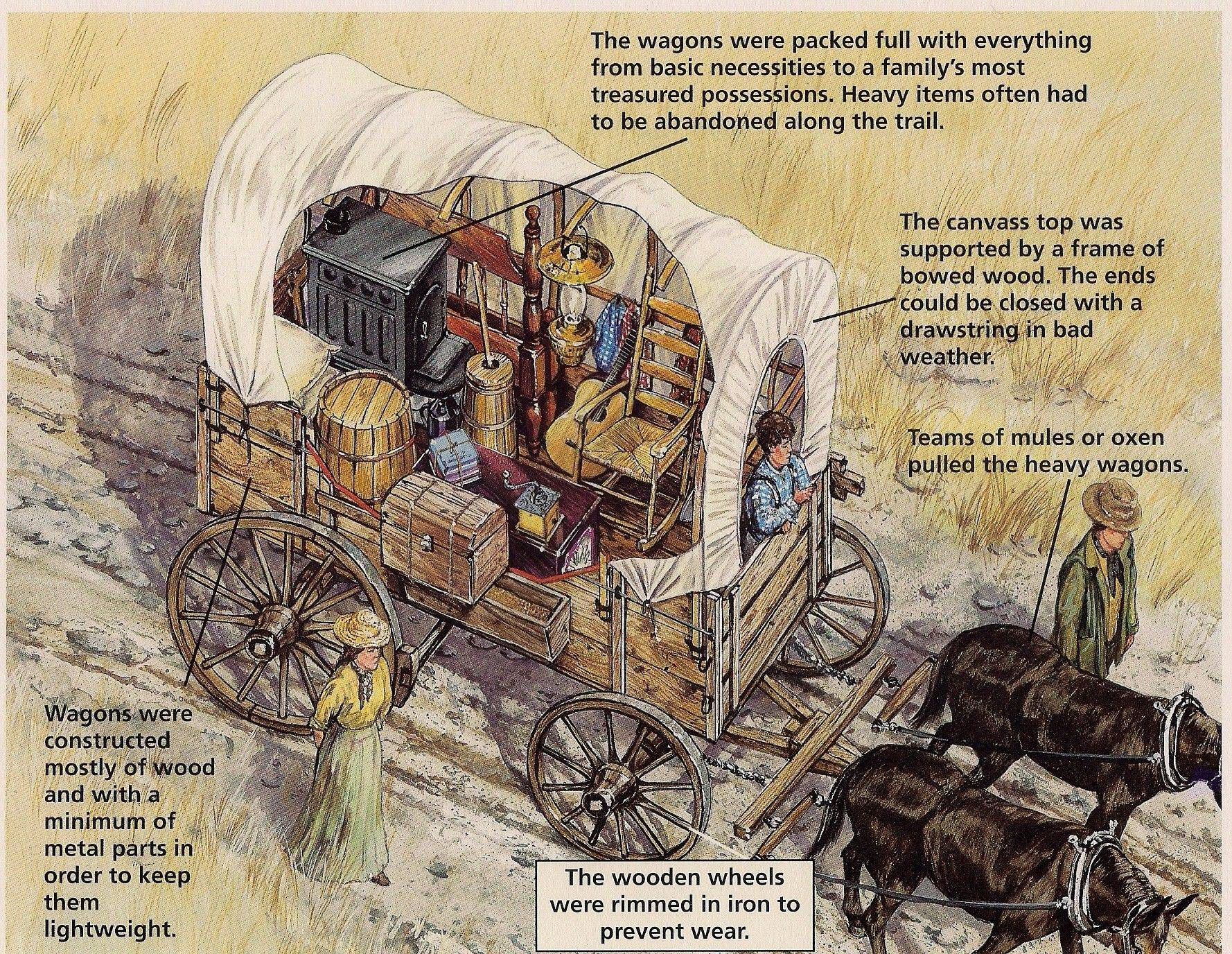 Drawing of a covered wagon with the inside supplies