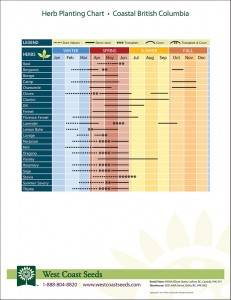 image relating to Printable Seed Starting Chart named Community Planting Charts West Coastline Seeds