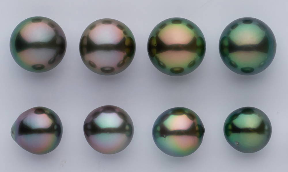 Tahitian Pearl Grading Scales - Close Up of Fine Tahitians