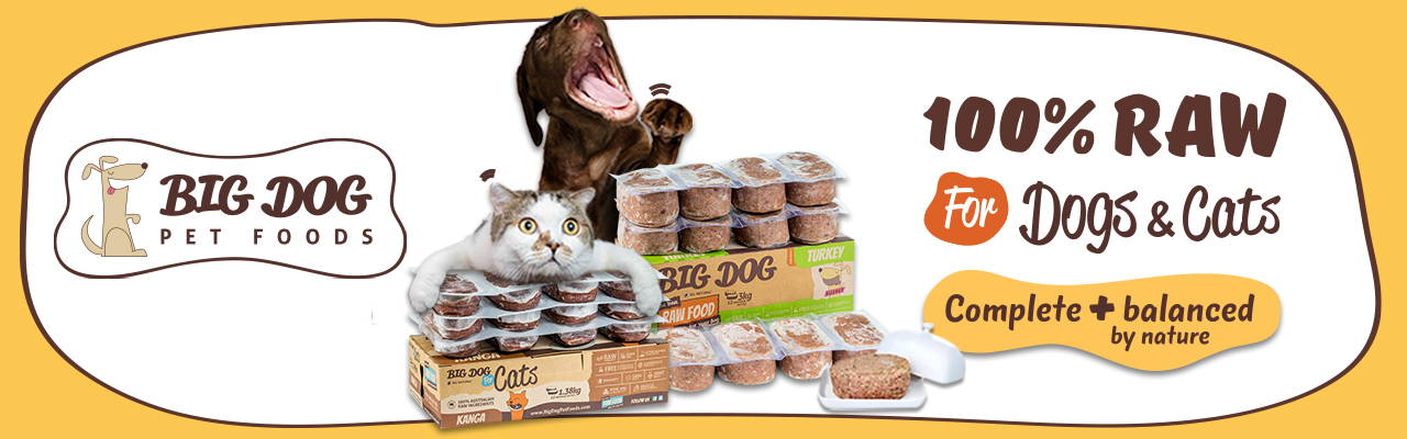 Big Dog barf frozen cat and dog food collection online pet shop pawpy kisses singapore.1