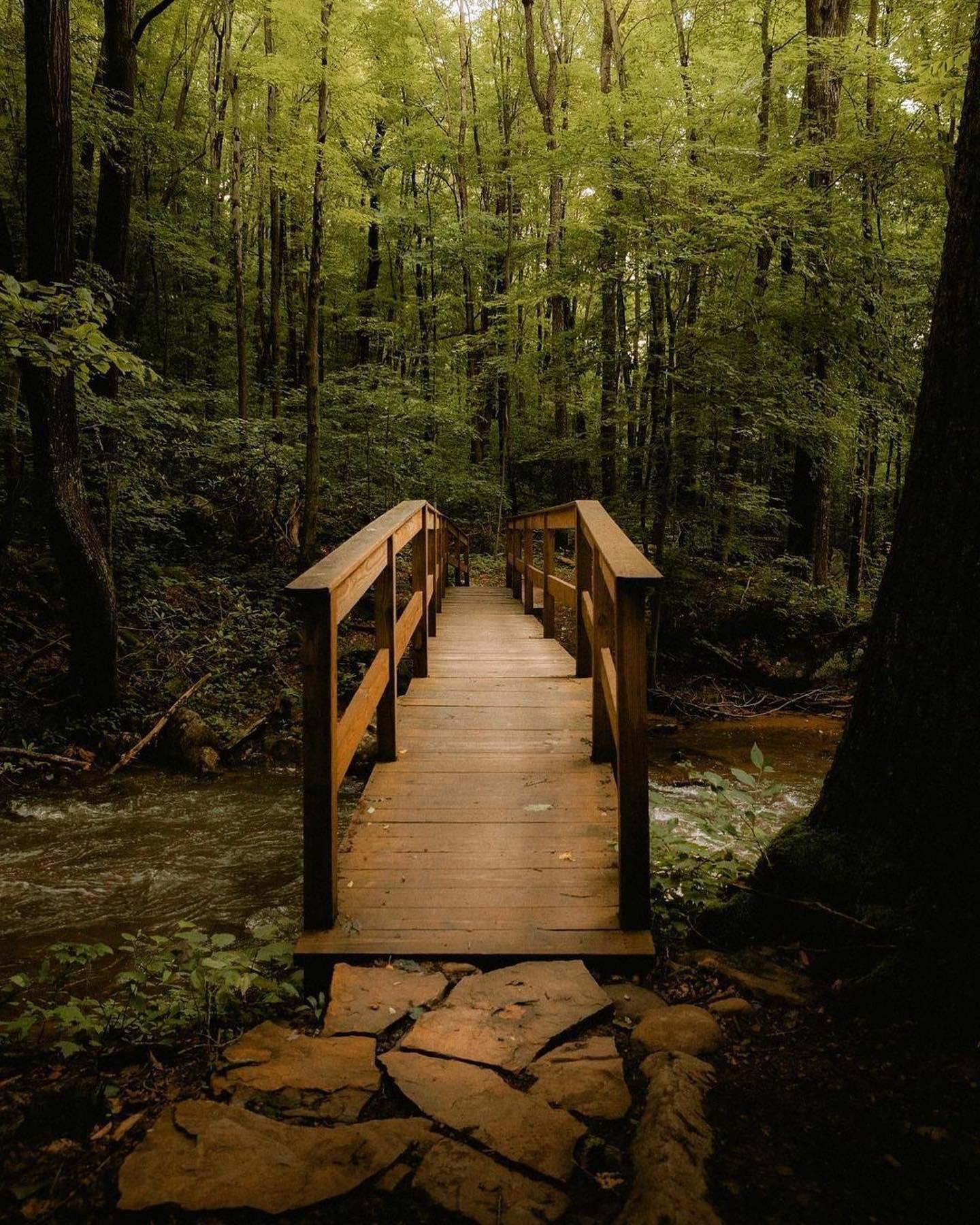 Jonathan Run Falls Trail via Kentuck Trail in Ohiopyle State Park