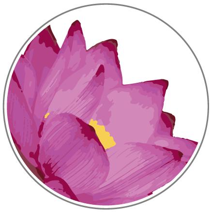 Ruby Color of the Pau Hana Lotus Yoga SUP