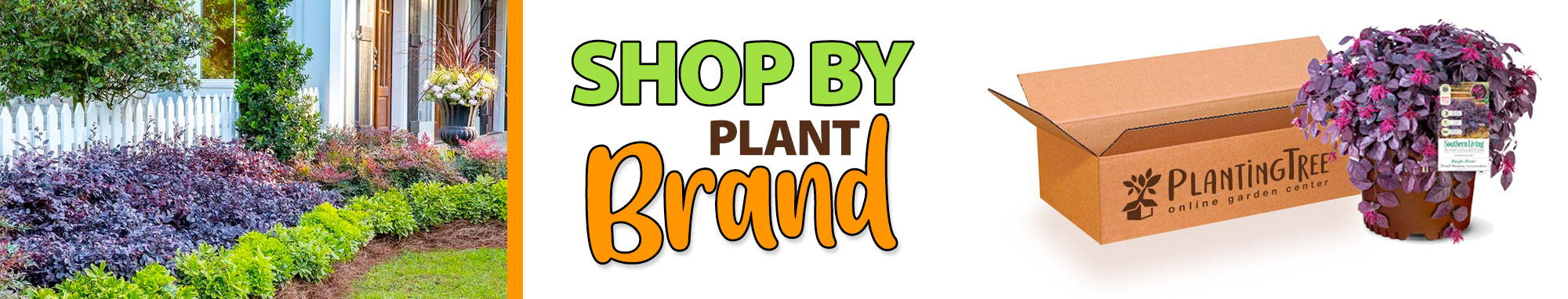 Shop By Plant Brand