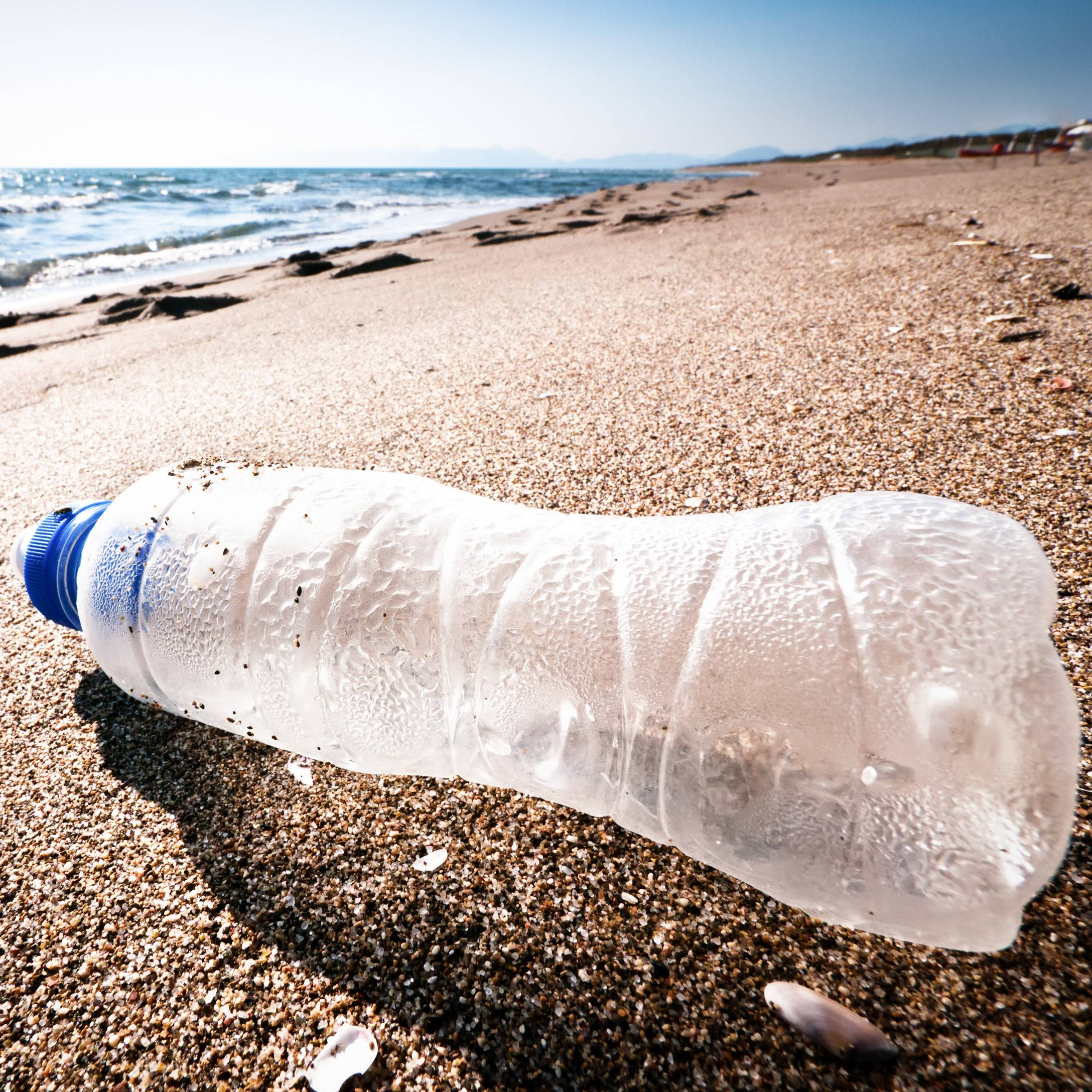 Plastic bottle washed up on beach