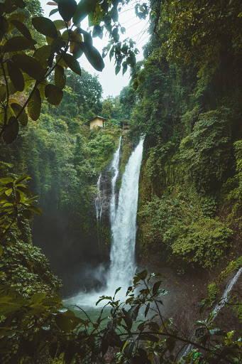 waterfall in jungle_Earth Day