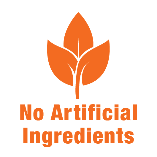 No artificial ingredients
