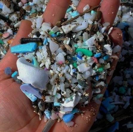 A handful of plastic waste collected on the beach