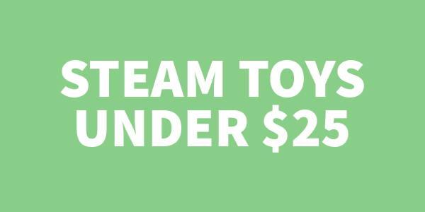 STEAM TOYS UNDER $25