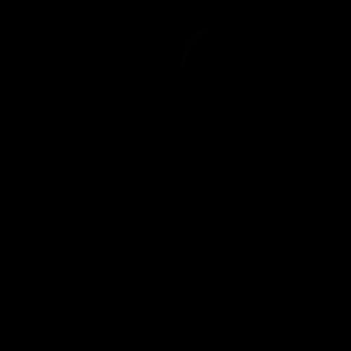 Apfel Körperform Figur Shapewear Miedermode