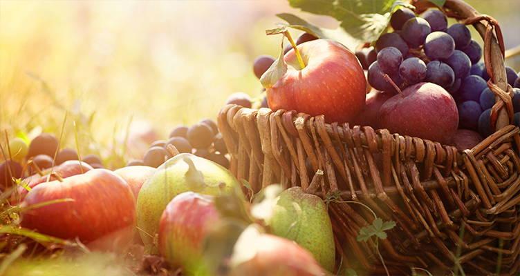 Obst aus eigenem Garten