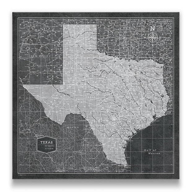 Texas Push pin travel map modern slate