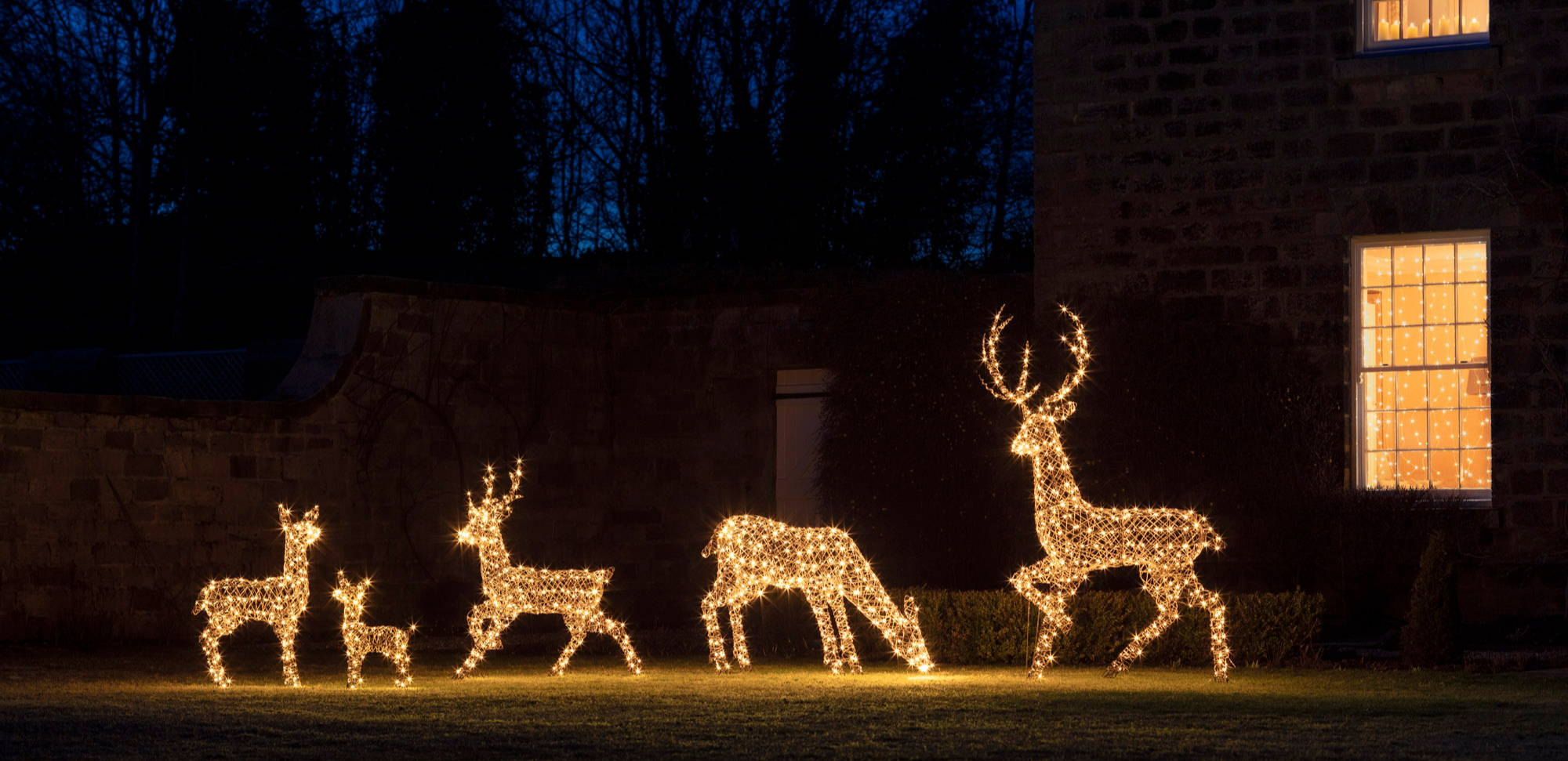 Light up reindeer family standing outdoors introducing sparkle to a Christmas setting