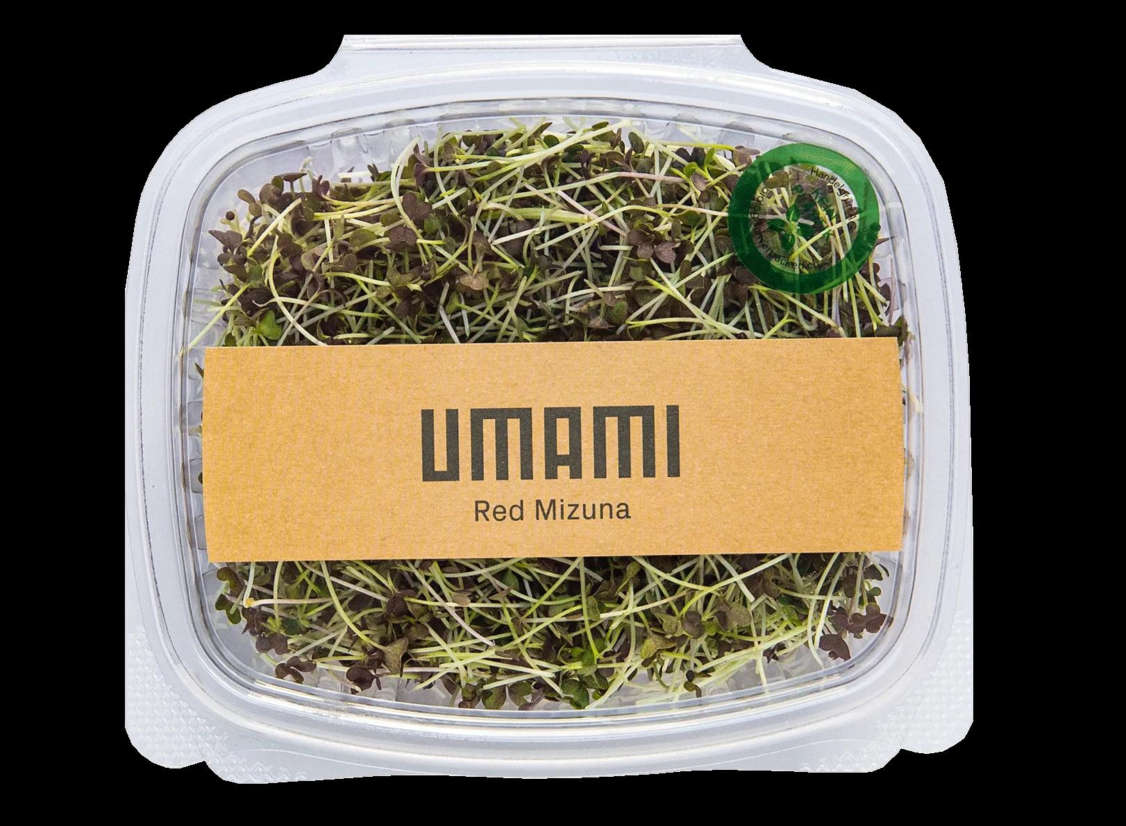 Red Mizuna Mustard Microgreens Urban Farming Zürich