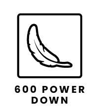 600 Power Down Icon