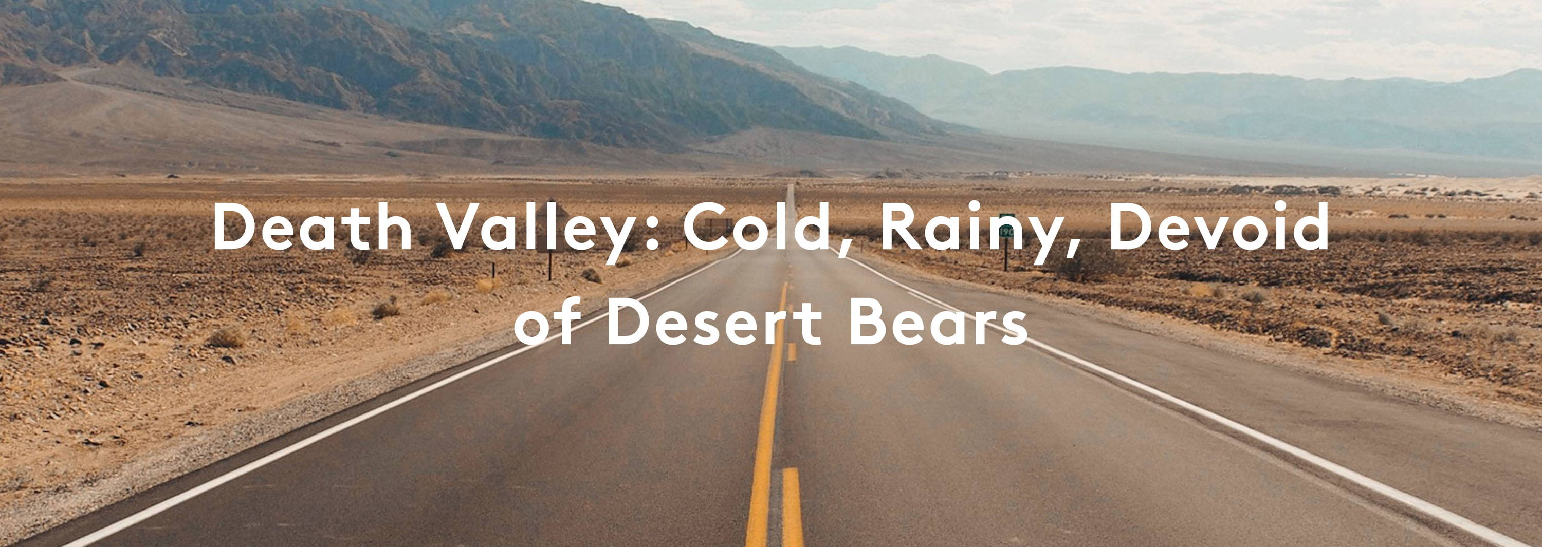 Death Valley: Cold, Rainy, Devoid of Desert Bears