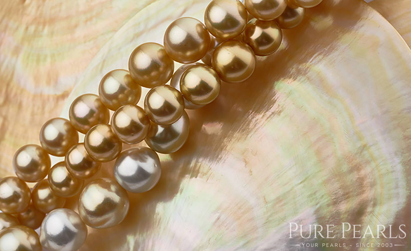 White and Golden South Sea Pearls are the Largest and Most Luxurious of All Pearl Types