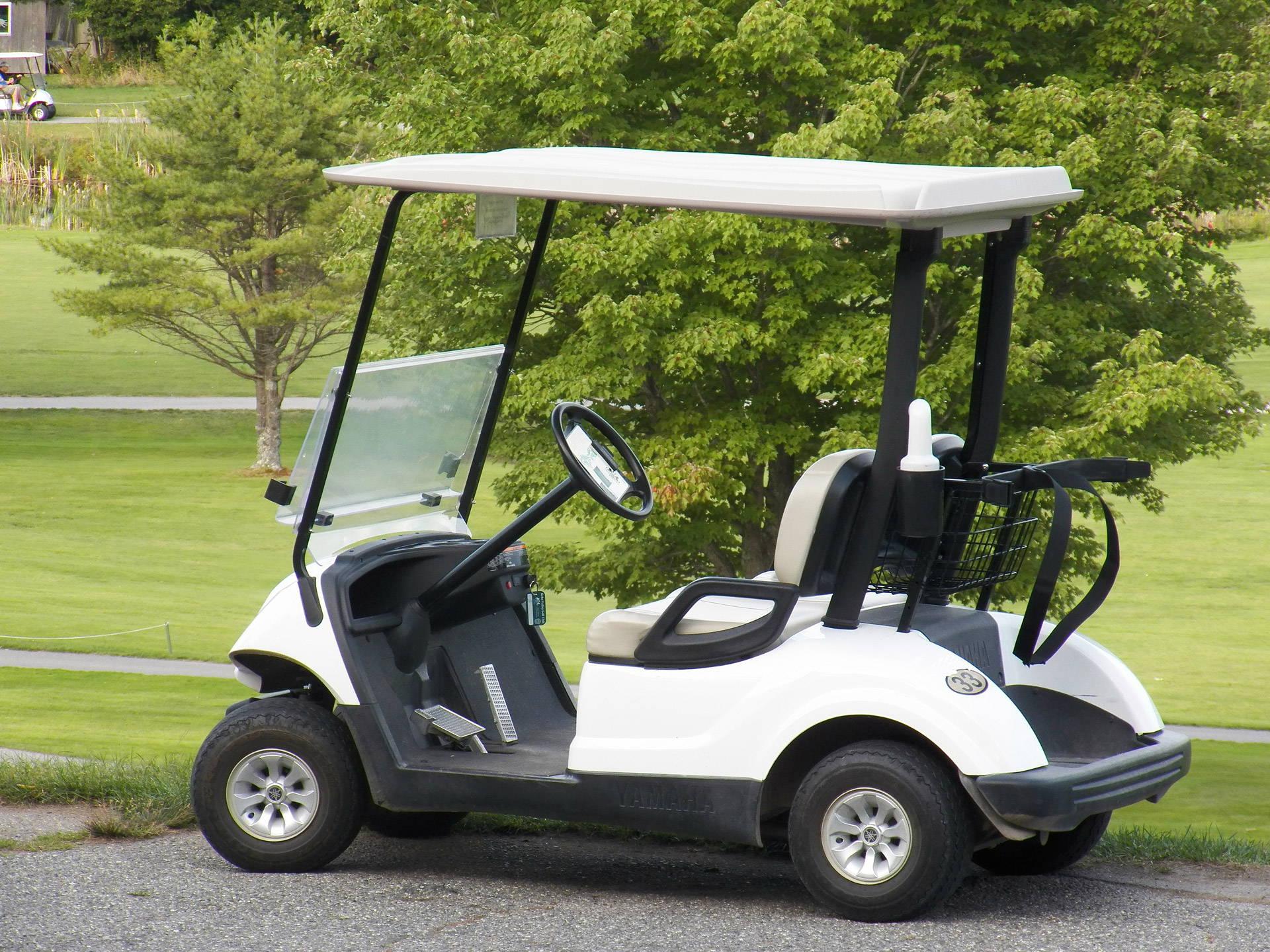 Golf Cart Medallion GPS