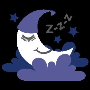 Sleep Support For Sleep Quality