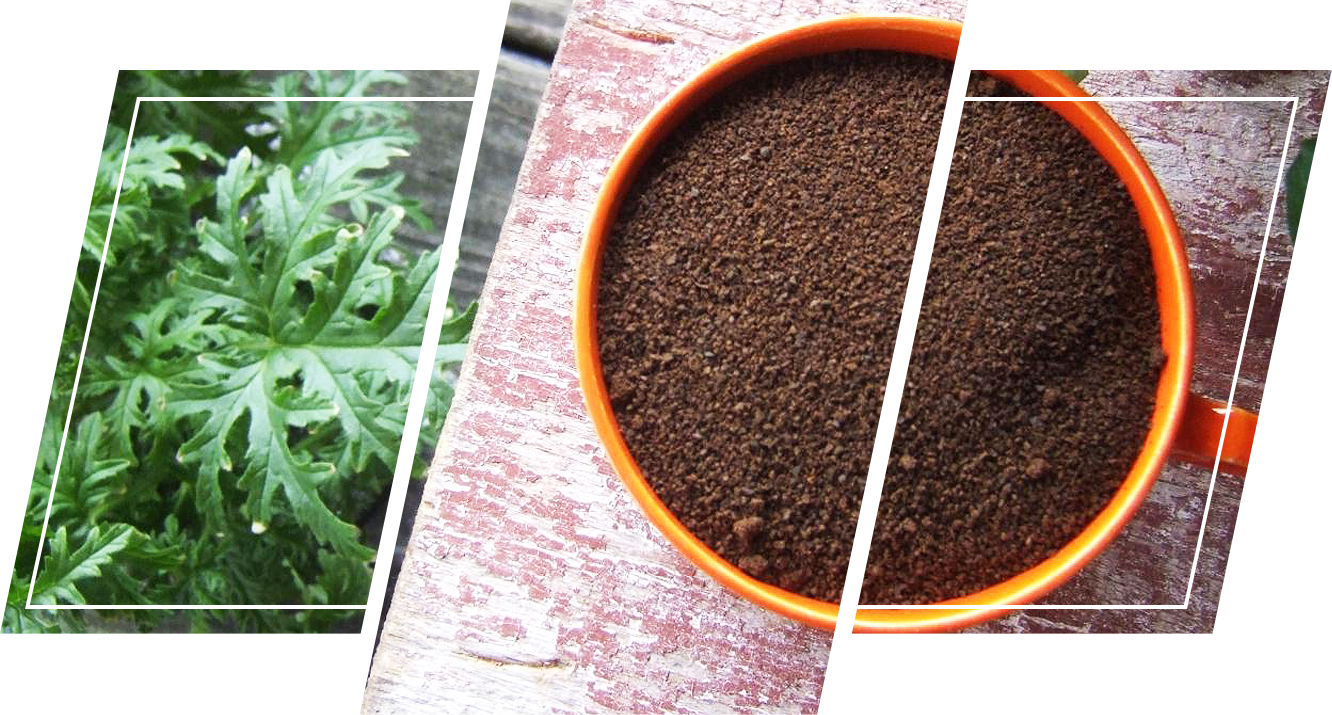 An overview image of a coffee grounds