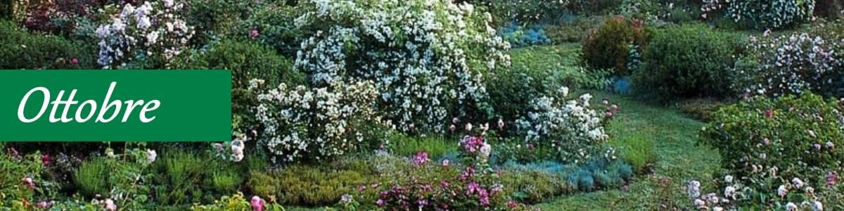 Potatura piante ottobre giardino biologico