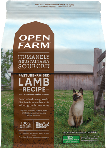 Pasture-Raised Lamb Dry Cat Food
