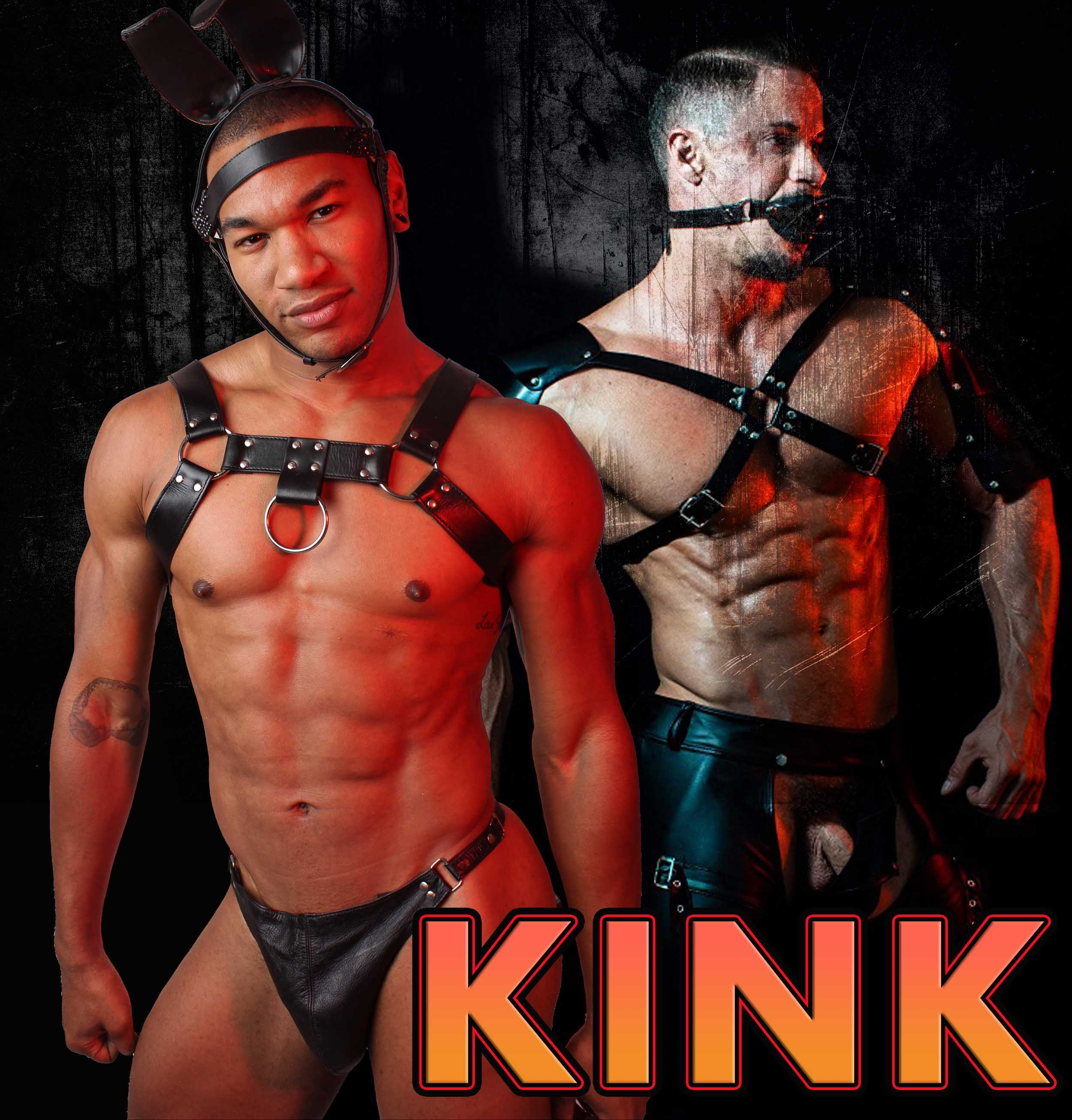 kink, harness, whip, gay