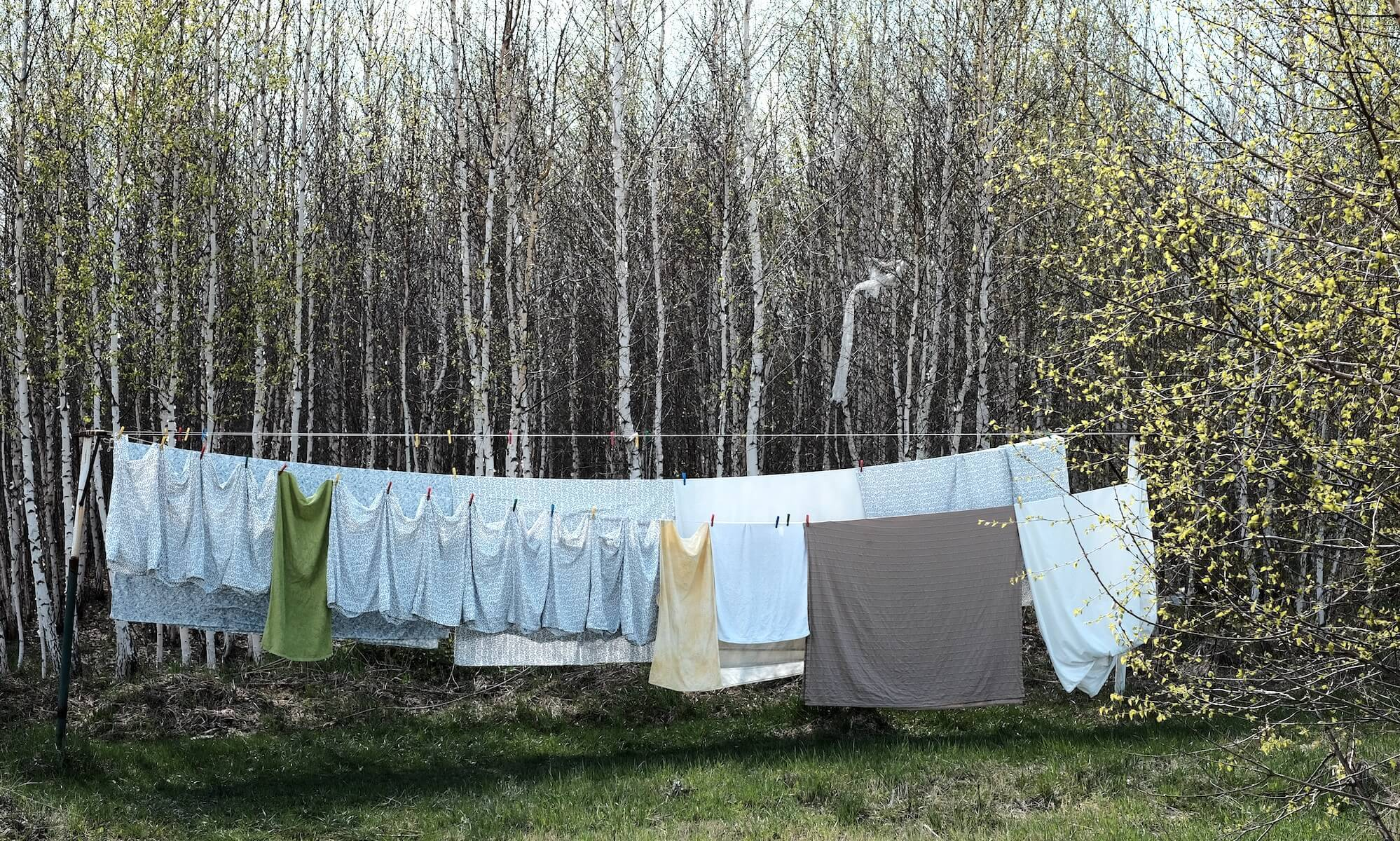 Orbasics-eco-laundry