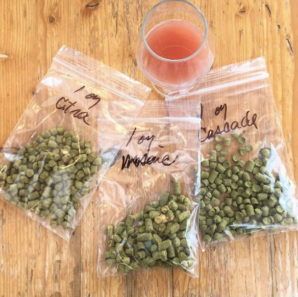Citra, cascade and mosaic hop pellets