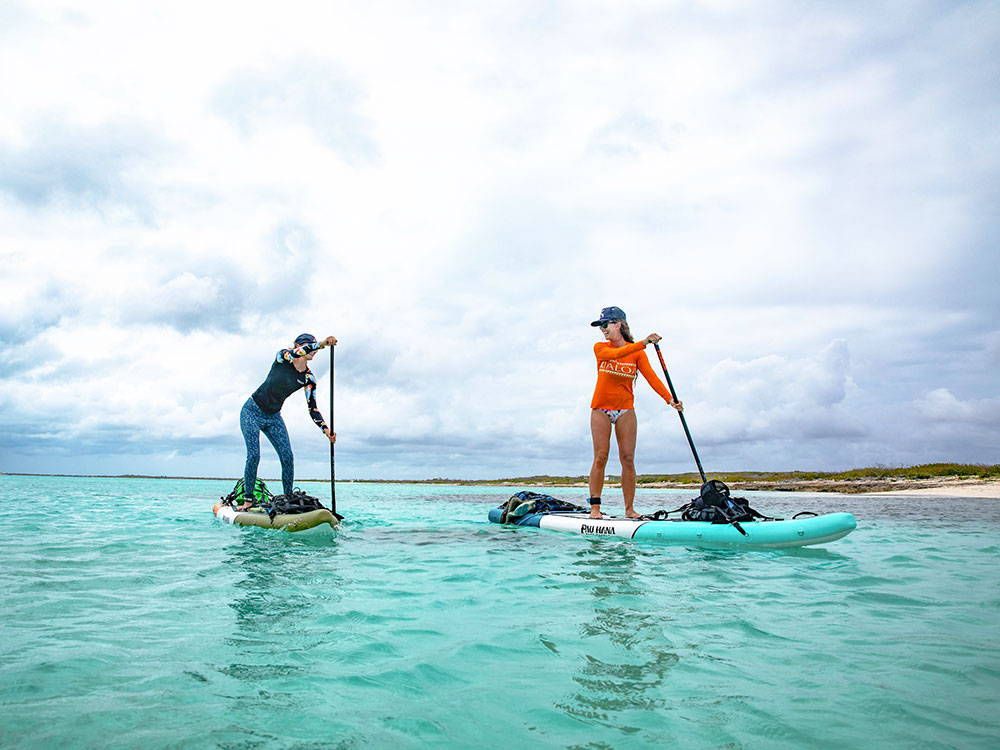 stand up paddling in Barbados