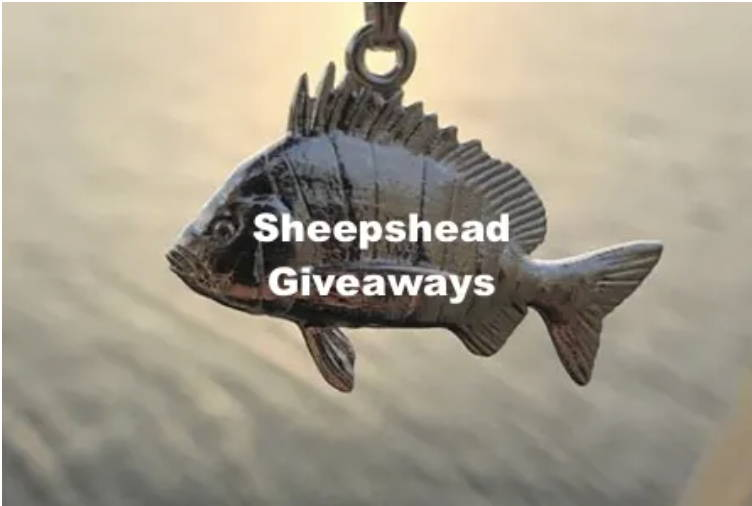 Sheepshead Giveaways