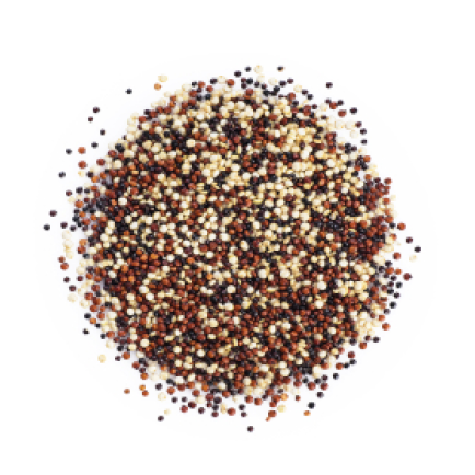 amaranth quinoa and sprouts blend