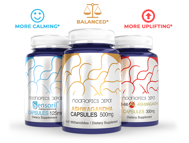 Choosing  The Best Natural Nootropics & Supplements