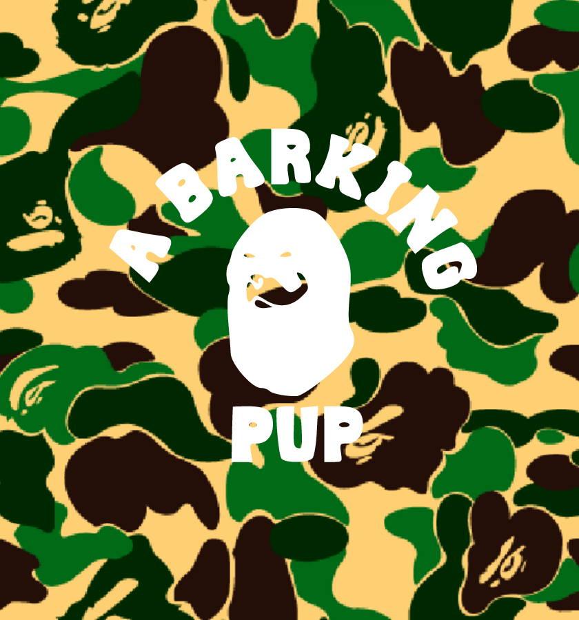 bape dog clothes