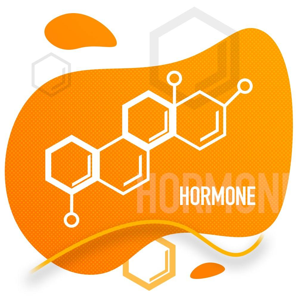 Katze miaut nachts - Hormone