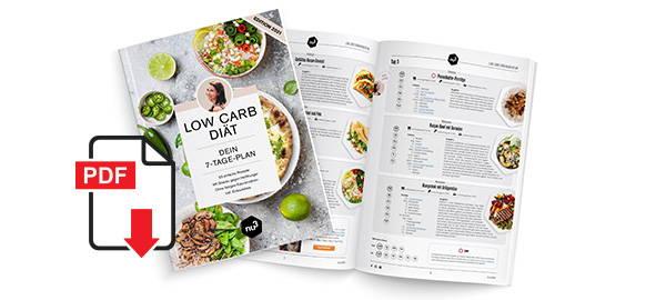 Low Carb Ernährungsplan Download